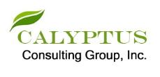 Calyptus logo